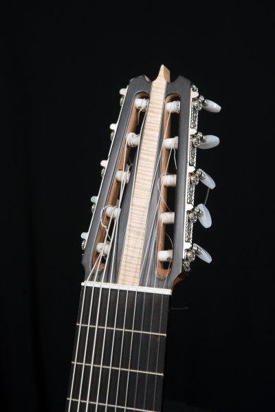 10 string Silent guitar, Ebony headstock, bone nut, Ebony fretboard.JPG