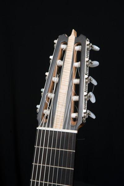 10 string Silent guitar, Ebony headstock, bone nut, Ebony fretboard.JPG