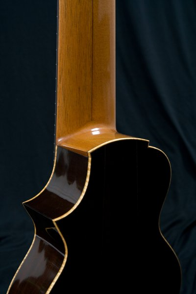14 string guitar, Brazilian Rosewood back & sides, cutaway, shellac polishing.JPG