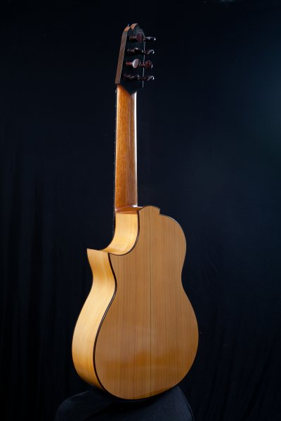 8stringed Cypress Flamenco guitar.
