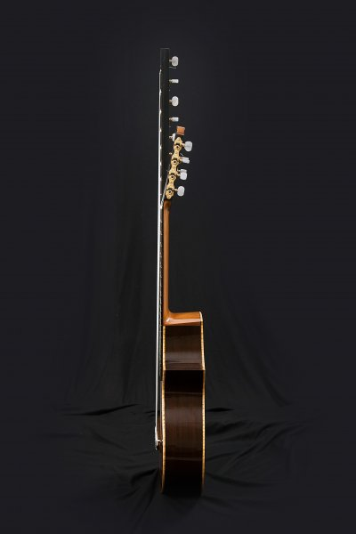Altoguitar, Dalbergia nigra ribs, Honduras Cedar neck. Neck thickness 17mm. - 19mm, reinforced with two truss rod.JPG