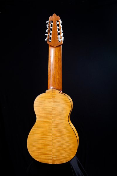 Decacorde guitar, string length 62,8 cm, total guitar length 97,8 cm. Back and sides European Maple.jpg