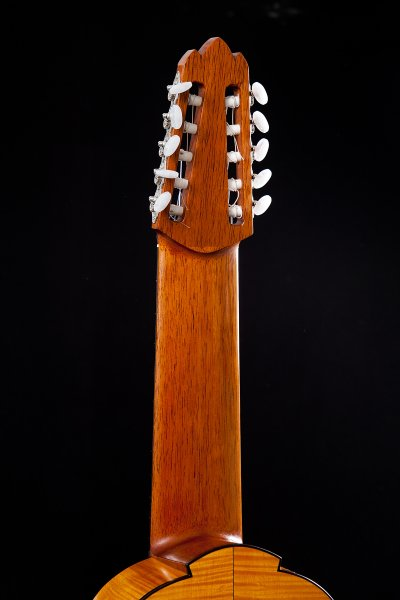 Decacorde guitar neck.jpg